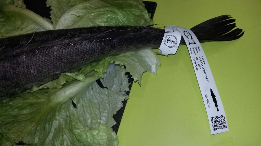 Showcooking AGROPEC 2015 pescado de rula (1)