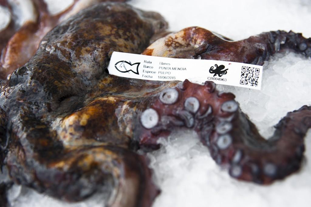 pulpo pescado de rula